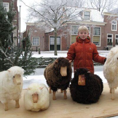 Hvidt får