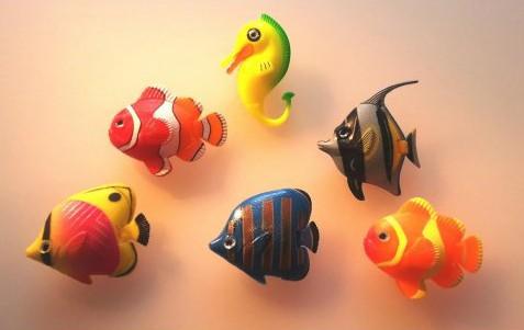 Sæt med 5 fisk og 1 søhest